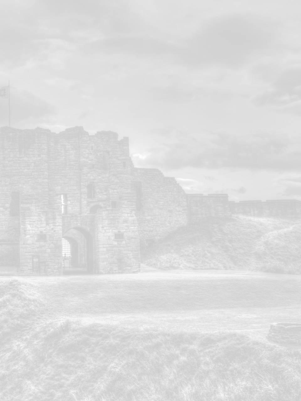seo newcastle image for newcastle castle
