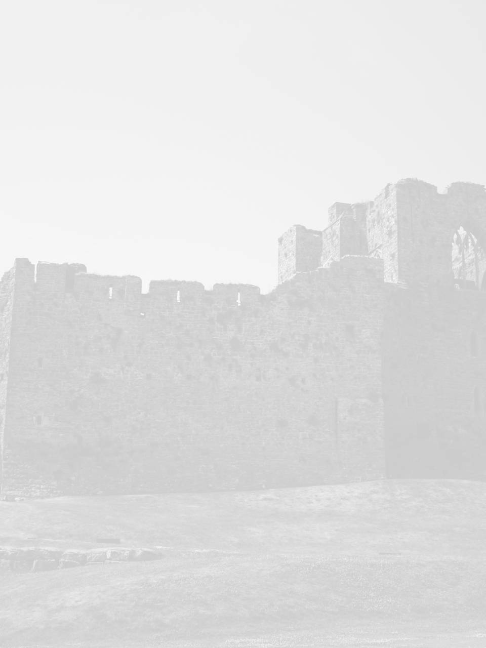 seo swansea image of oystermouth castle swansea
