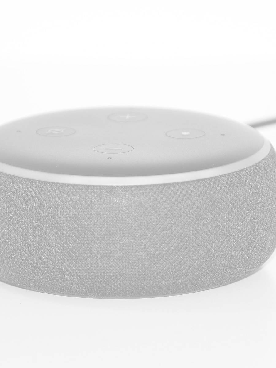 google voice search free guide