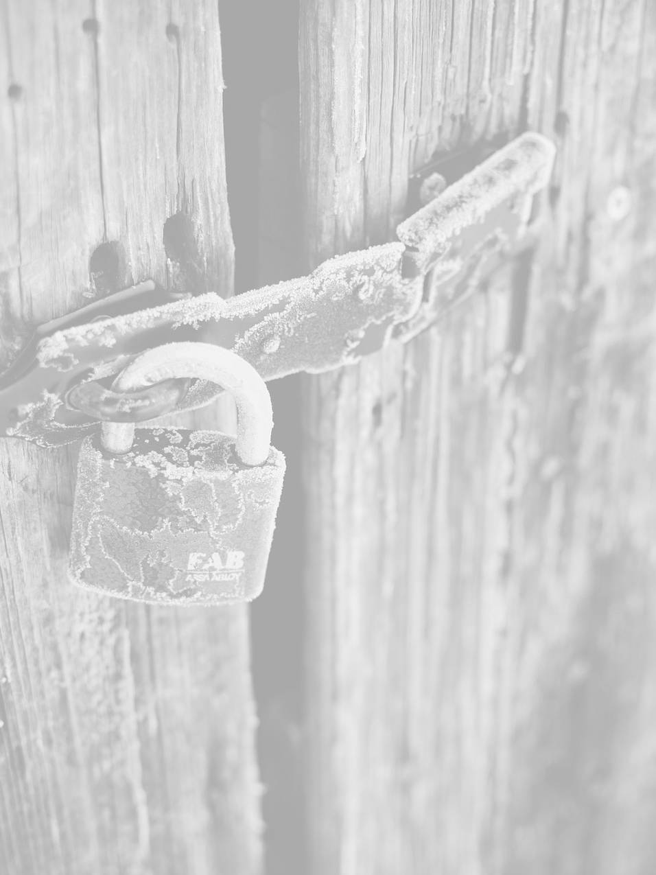 what is an ssl for beginners